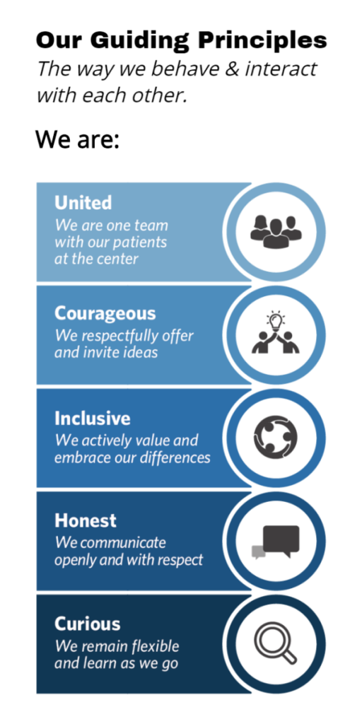 guiding principles infographic